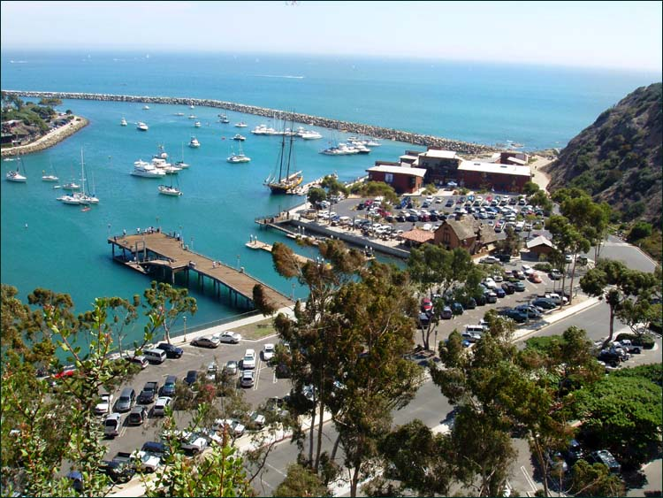 Kammans spring tour all you need is love for Dana point harbor fishing